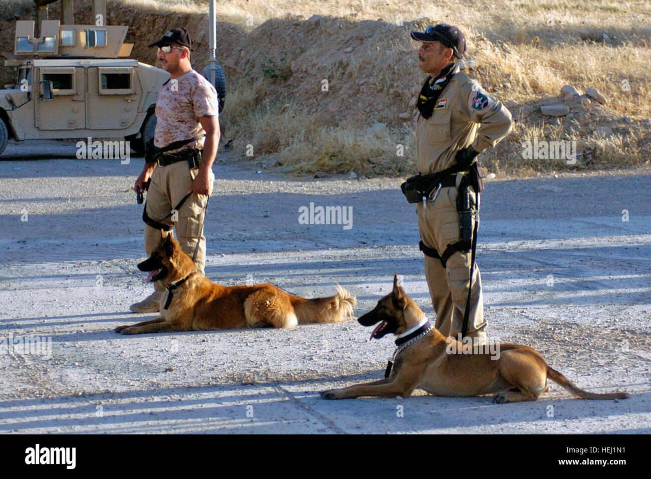working dog training courses