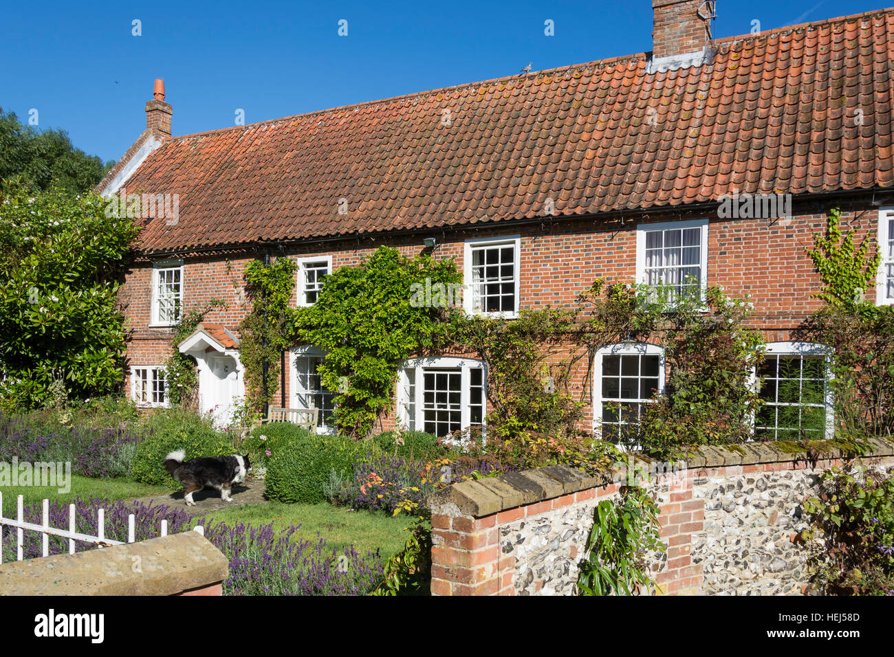 Country cottage and garden, South Creake, Norfolk, England, United Kingdom - Stock Image