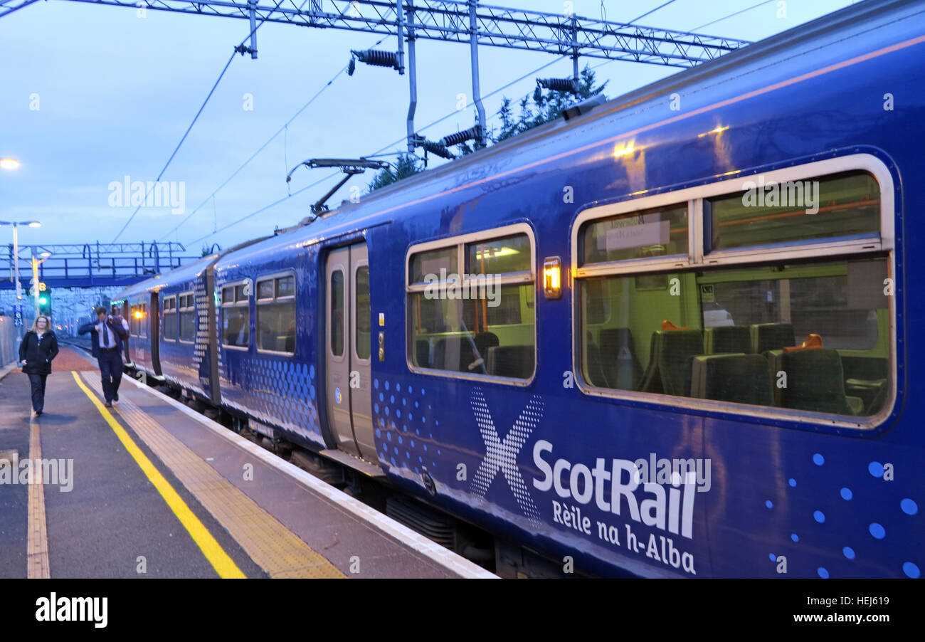 Motherwell Station Scotrail Abellio train carriages, Strathclyde, Scotland, UK - Stock Image