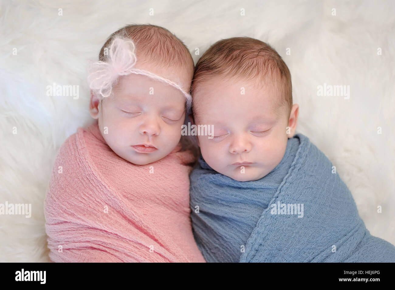 1adb13f9ef3b1f Two month old, fraternal twin, brother and sister babies swaddled in pink  and blue