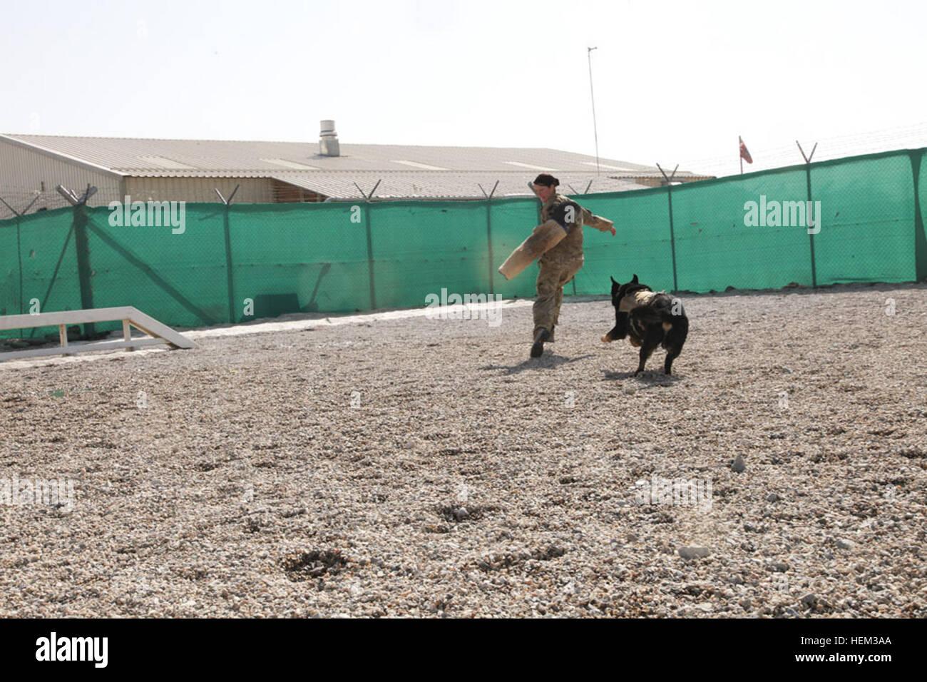 U S  Army Sgt  Danielle Jennings, a patrol explosive