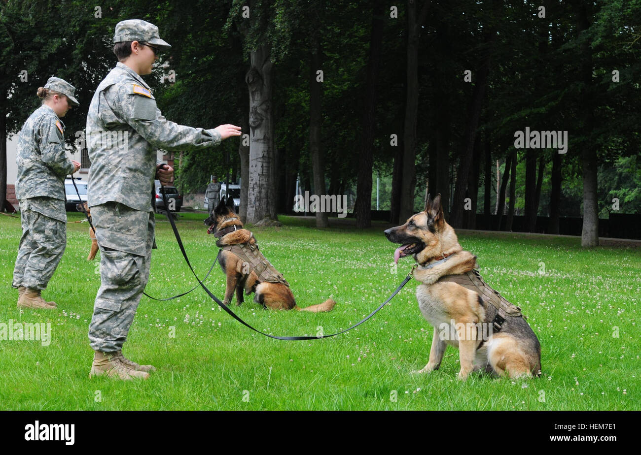 Pvt. Kaitlin Hanes, front, a military dog handler with the 100th Military Working Dog Detachment and a native of - Stock Image