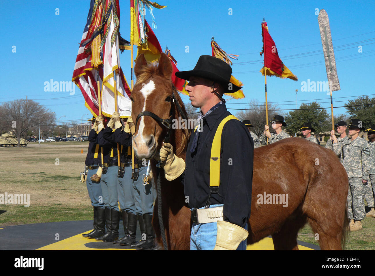 ajax a former member of the 1st cavalry division horse cavalry