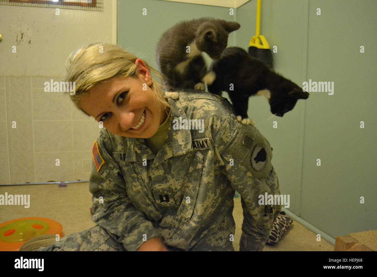 Capt. Cheryl Abbate, of 1st Brigade, 104th Division, socializes with the kittens at the Animal Refuge Center. Capt. - Stock Image