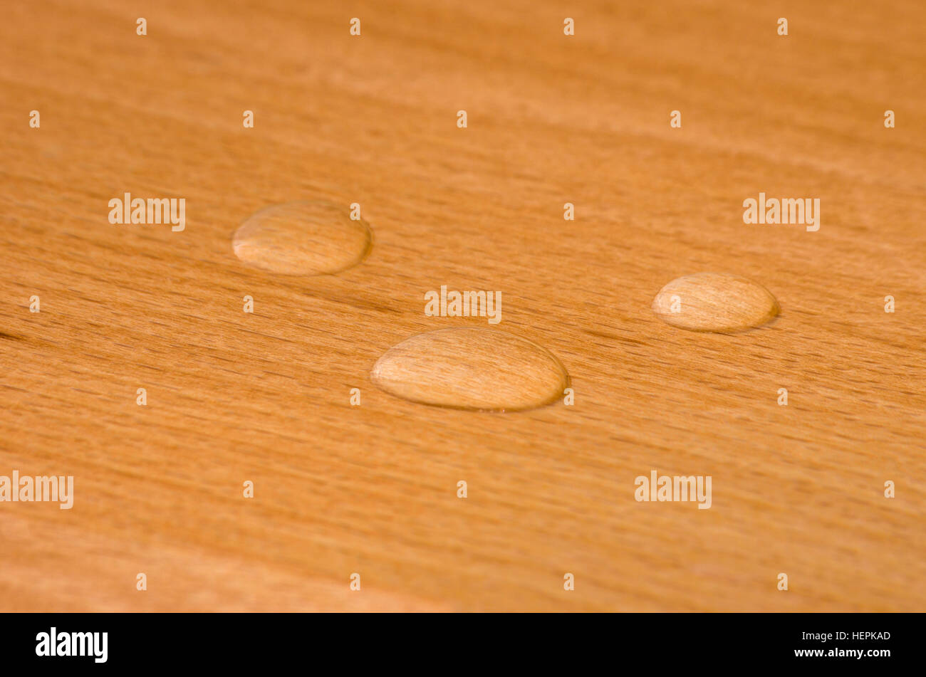 Water beads on finished beechwood. - Stock Image
