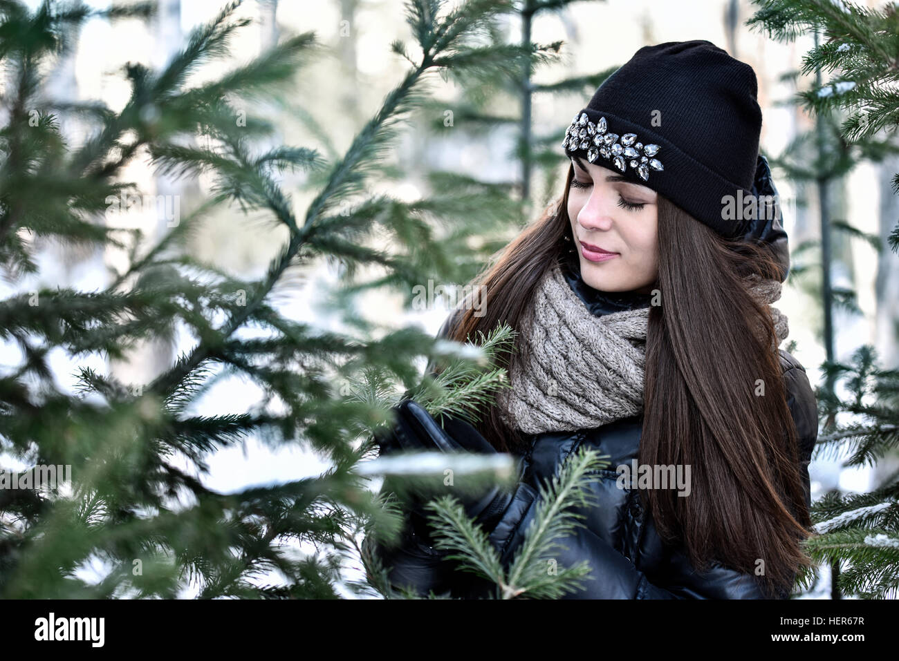The girl with dark long hair at the firs in winter park - Stock Image