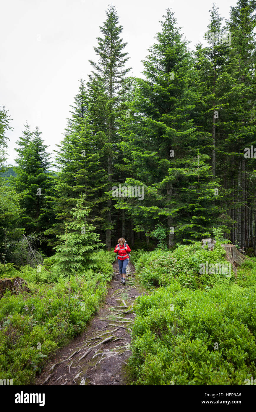 Traveller between Natrun and Jufen, village in the valley, Maria alp, Salzburg, Austria - Stock Image