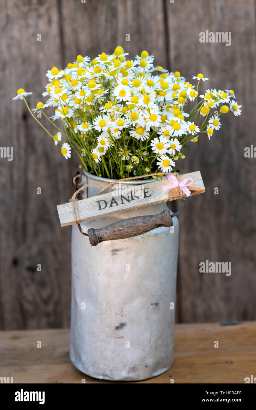 Old milk can with camomile and wooden sign 'Danke' in front of a wooden wall Stock Photo