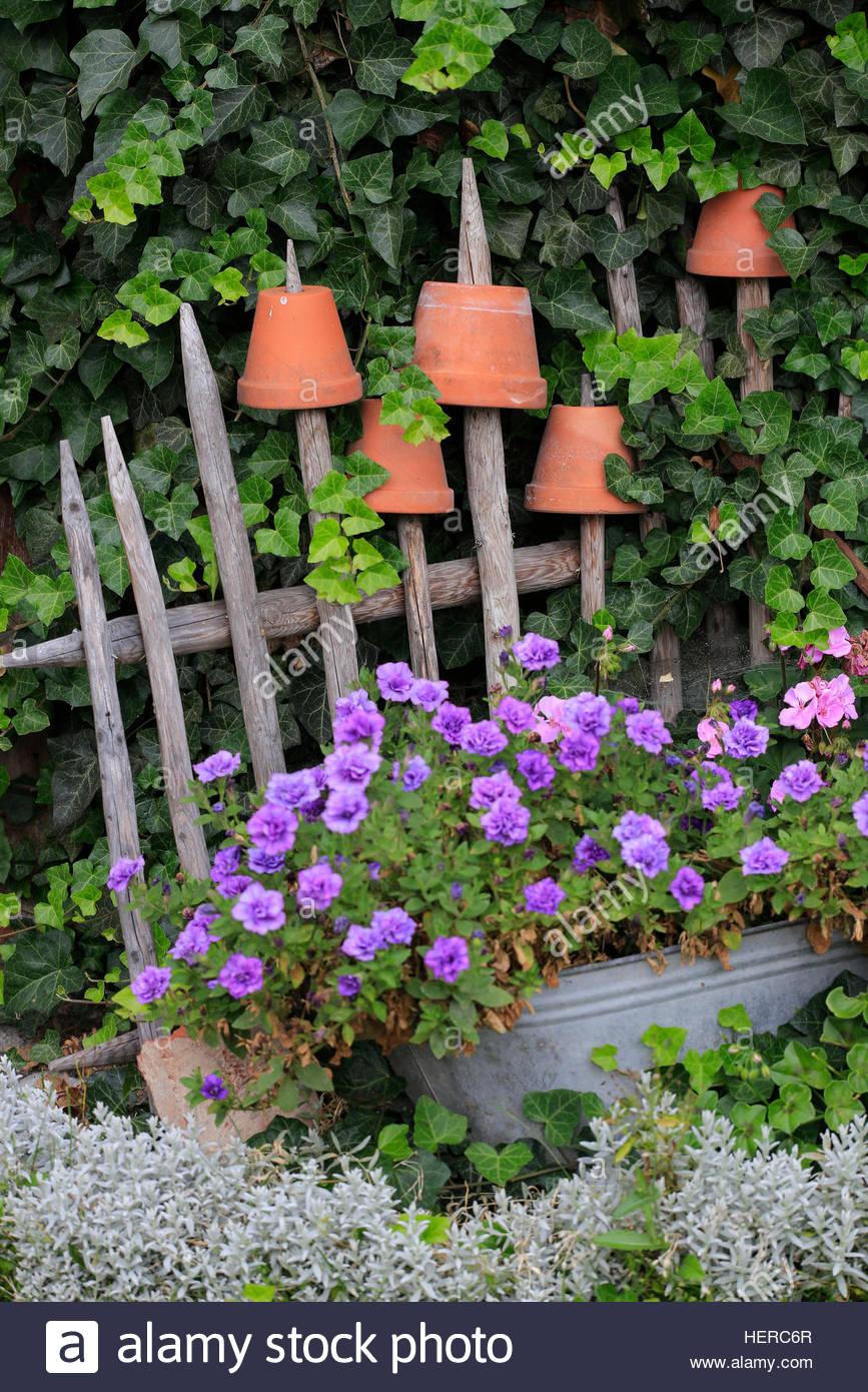 Alter Holzzaun Mit Tontöpfen Und Blumen   Stock Image