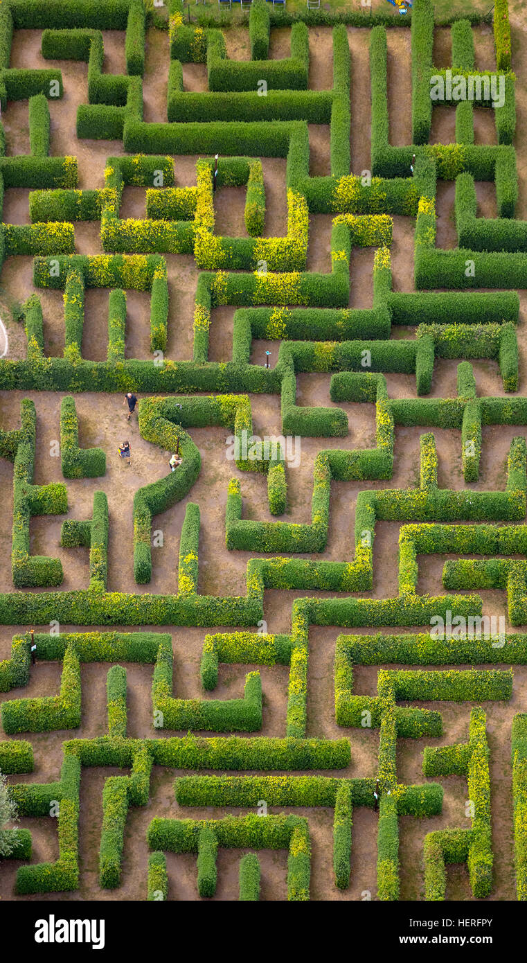 Aerial view, hedge maze, labyrinth, Bollewick, Mecklenburg-Western Pomerania, Germany - Stock Image