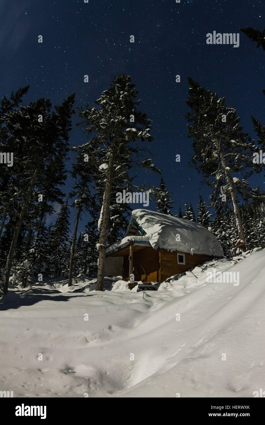 Cabin house chalets in winter forest with snow in light moon and starry sky. - Stock Image