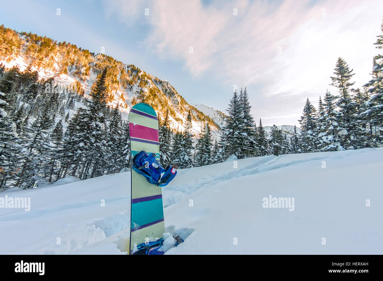 Snowboard standing in snow in mountains on road freeride - Stock Image