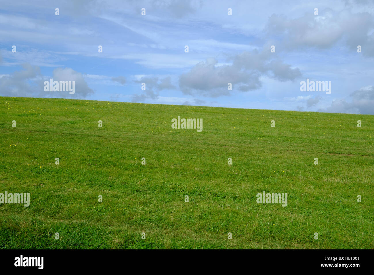 Green field and blue sky - Stock Image