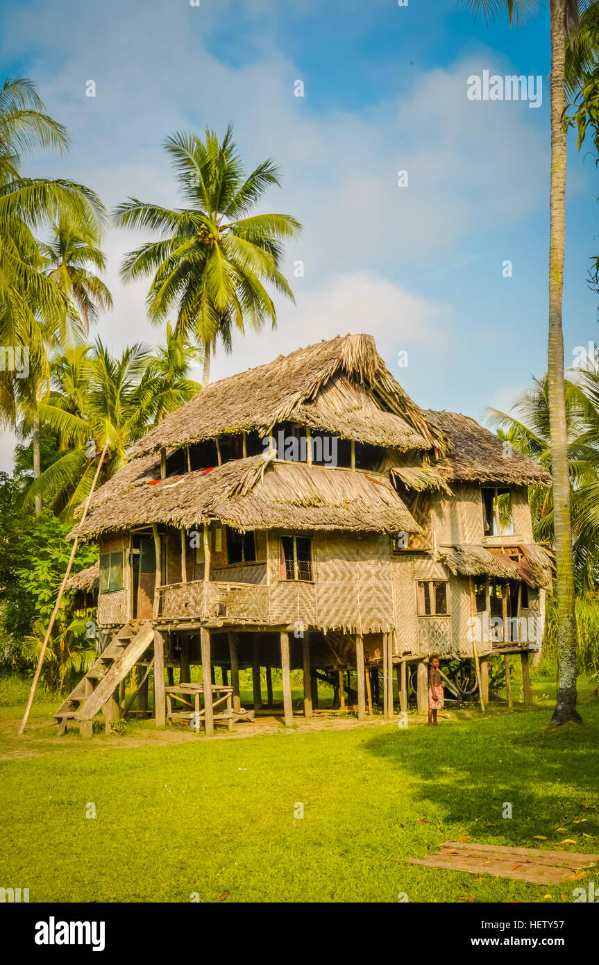 Large Simple House Made Of Wood And Straw Surrounded By Greenery In Avatip,  Sepik River In Papua New Guinea.