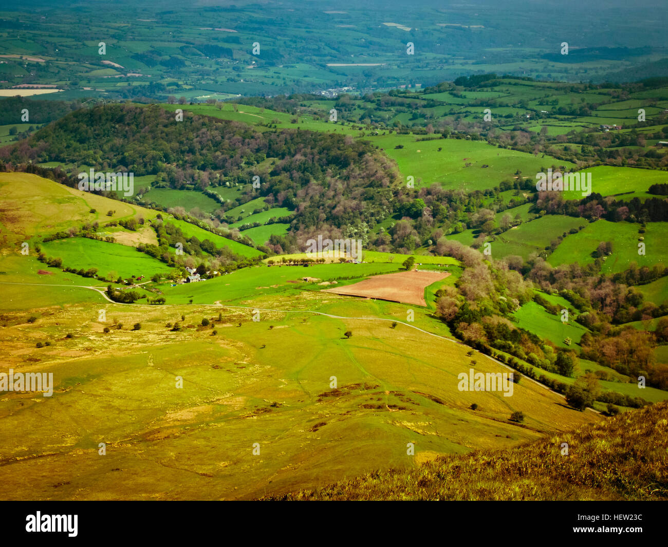 Countryside in the Wye Valley - South East Wales - Stock Image