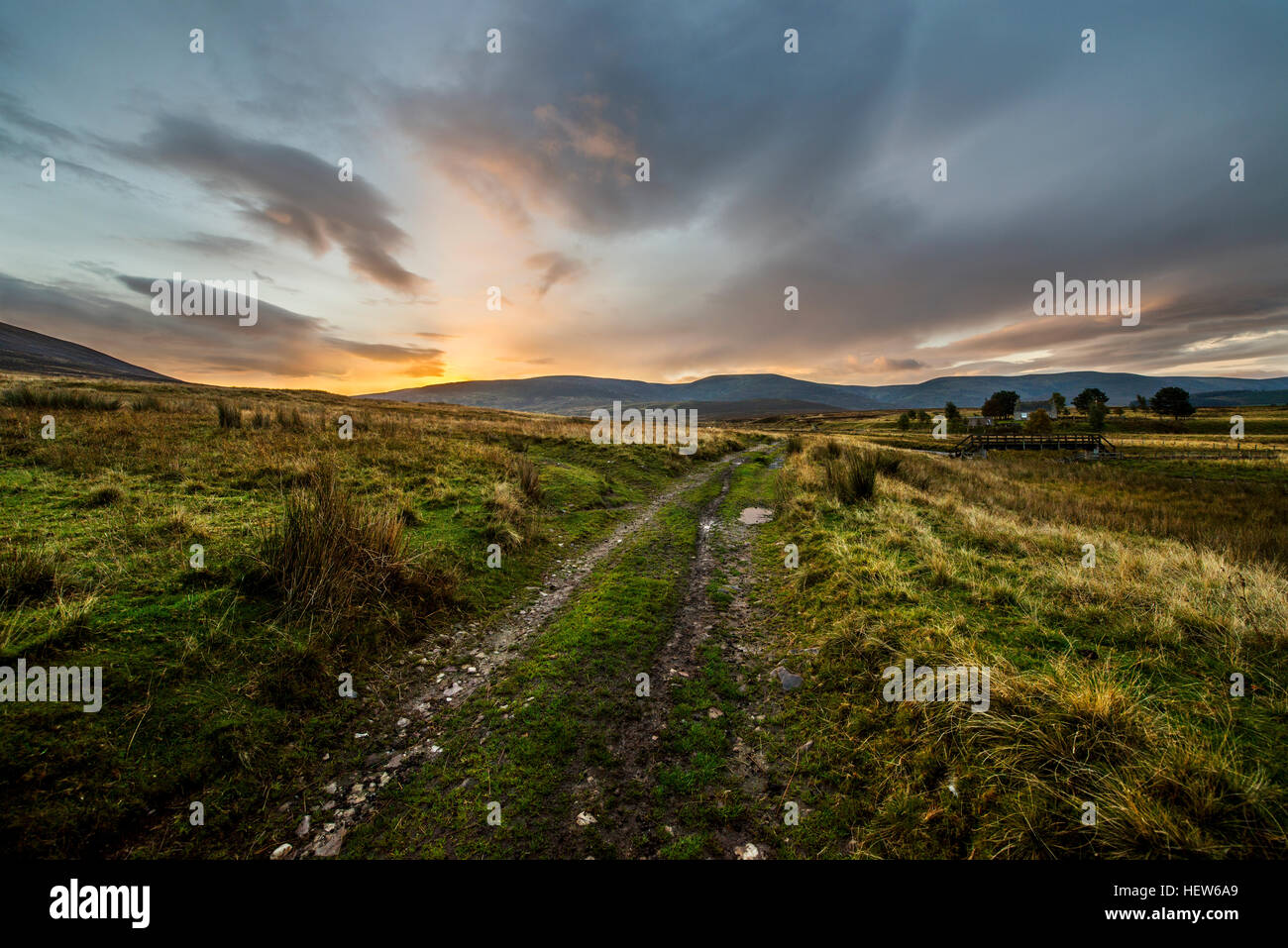 Path to the sunrise in the Cairngorms National Park, Scotland. - Stock Image