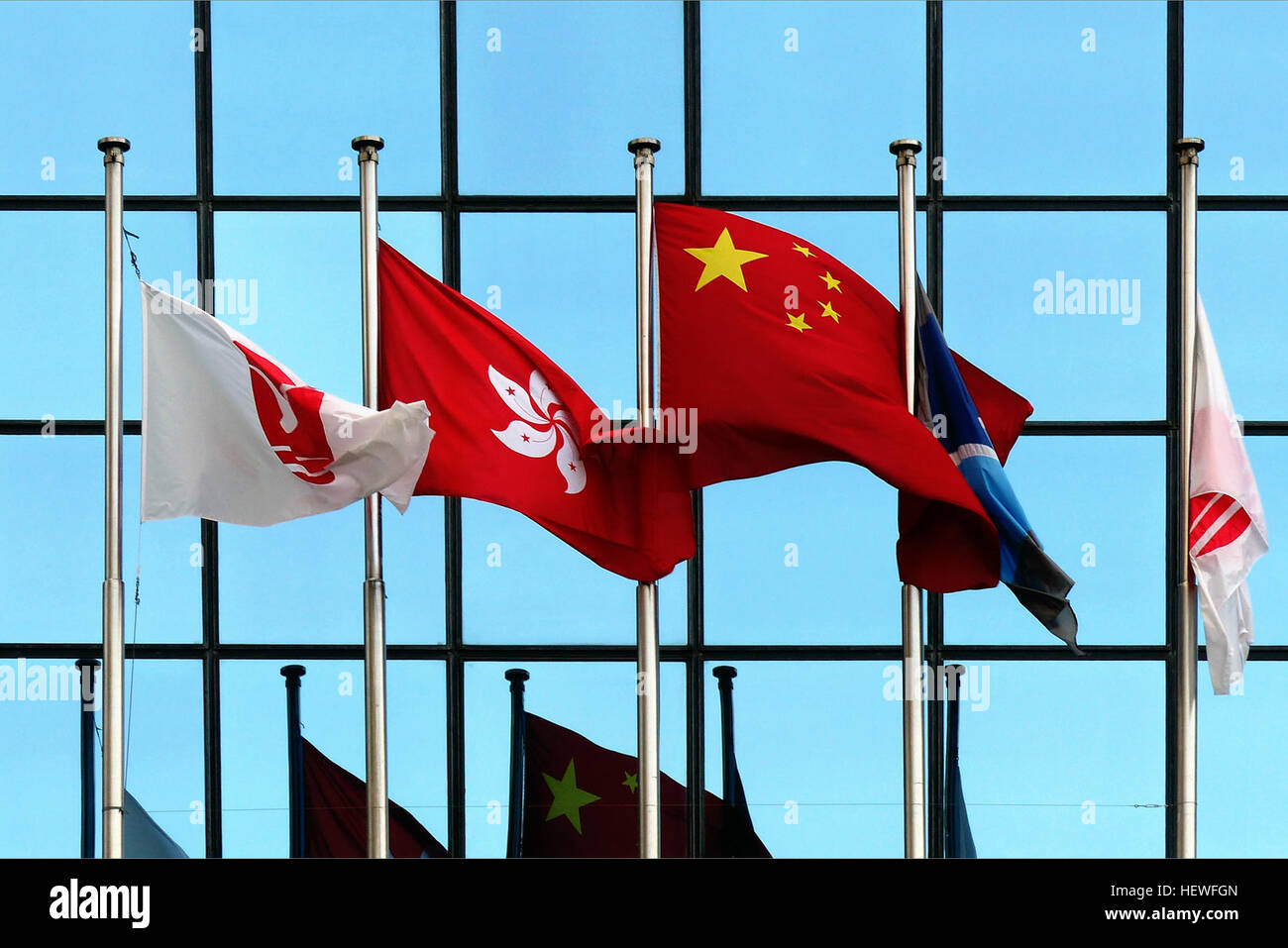 The flag of Hong Kong features a white, stylised, five-petal Hong Kong orchid tree (Bauhinia blakeana) flower in - Stock Image
