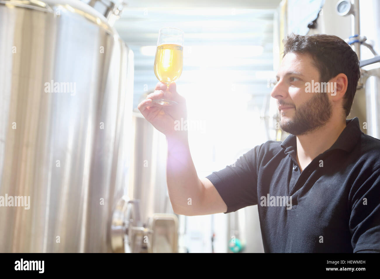 Worker in brewery inspecting beer at last stage of brewing - Stock Image