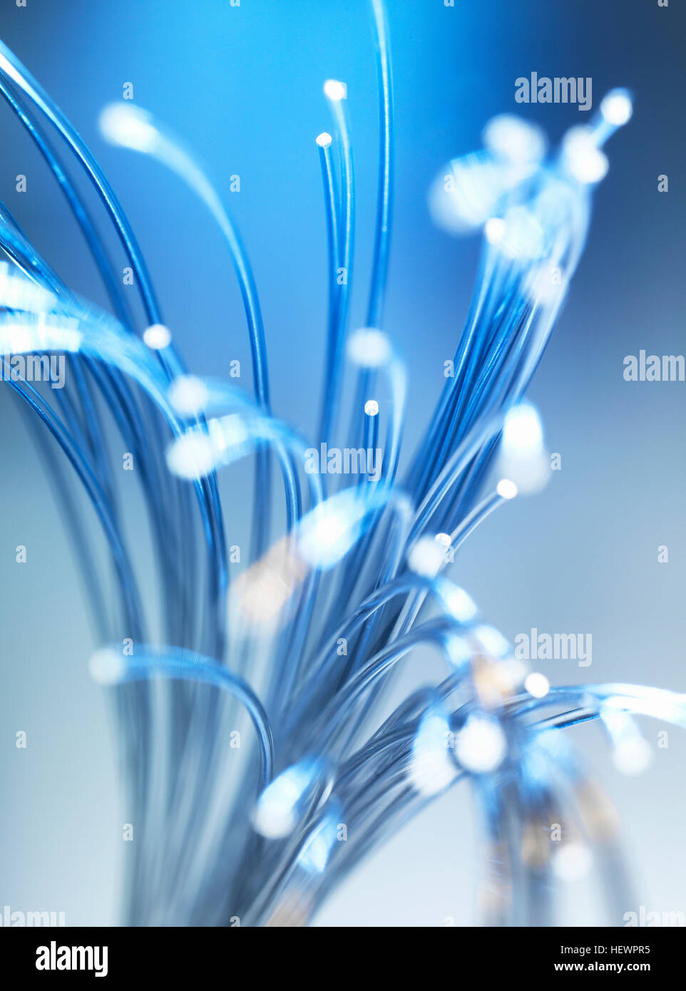 Bundle of fibre optic cables - Stock Image
