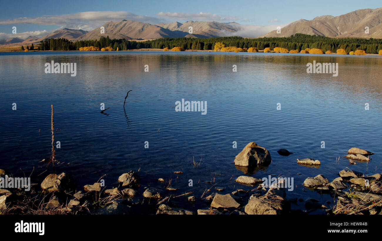 ication (,),NewZealand Fall Golden,Tekapo,Yellow,breath taking landscapes,fourseasons,lake - Stock Image