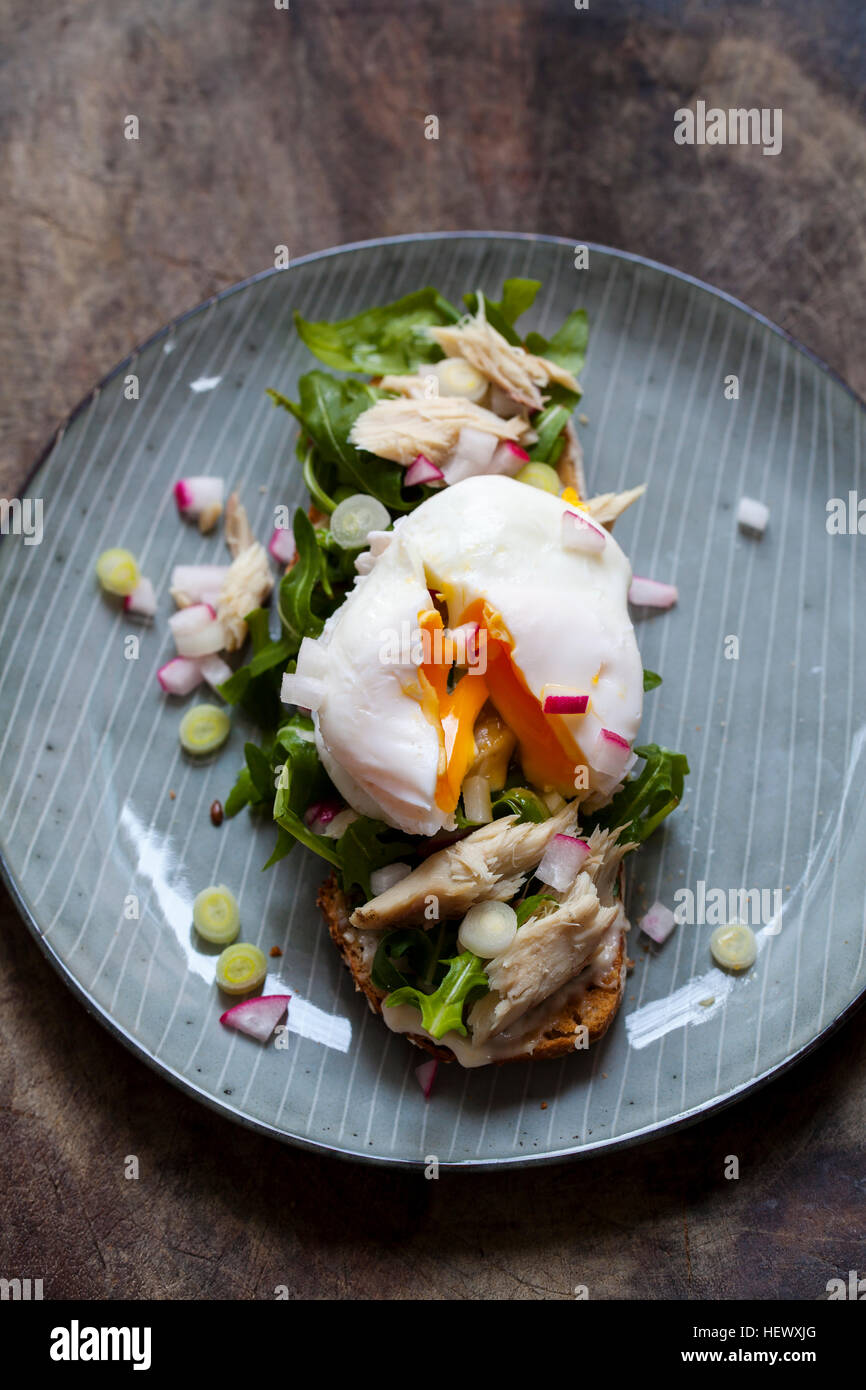 Open sandwich with salad, smoked mackerel and poached egg - Stock Image