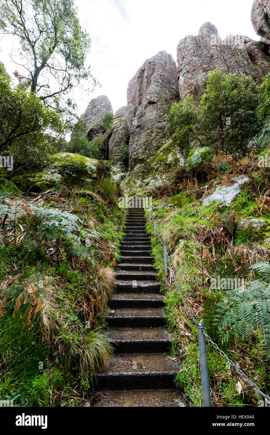 Hiking trail stairs follow a path up to a mountain towards rock pillars made of solvsbergite. - Stock Image