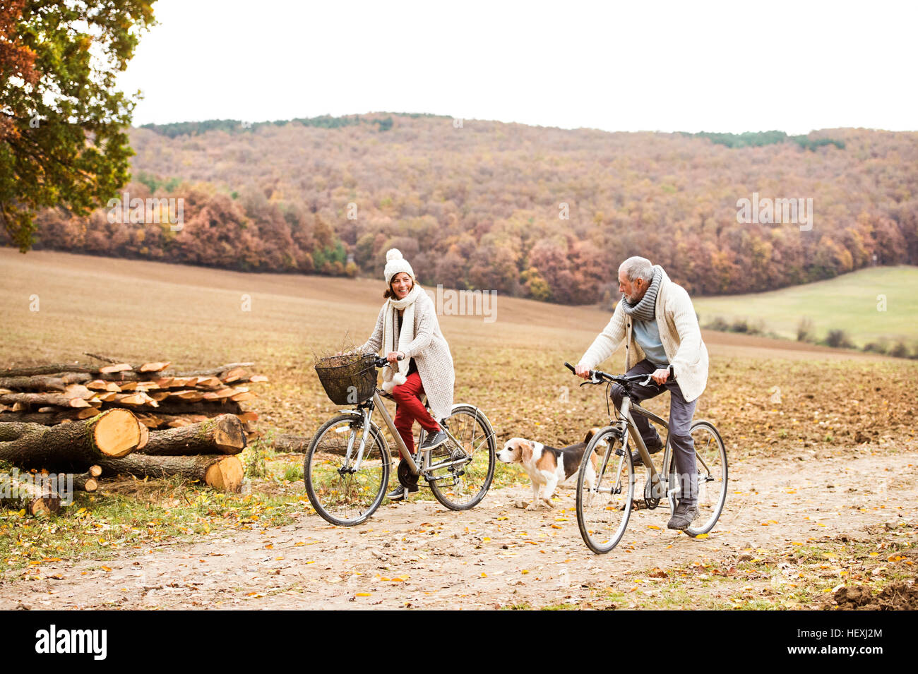 Senior couple doing a bicycle trip with dog in autumn - Stock Image