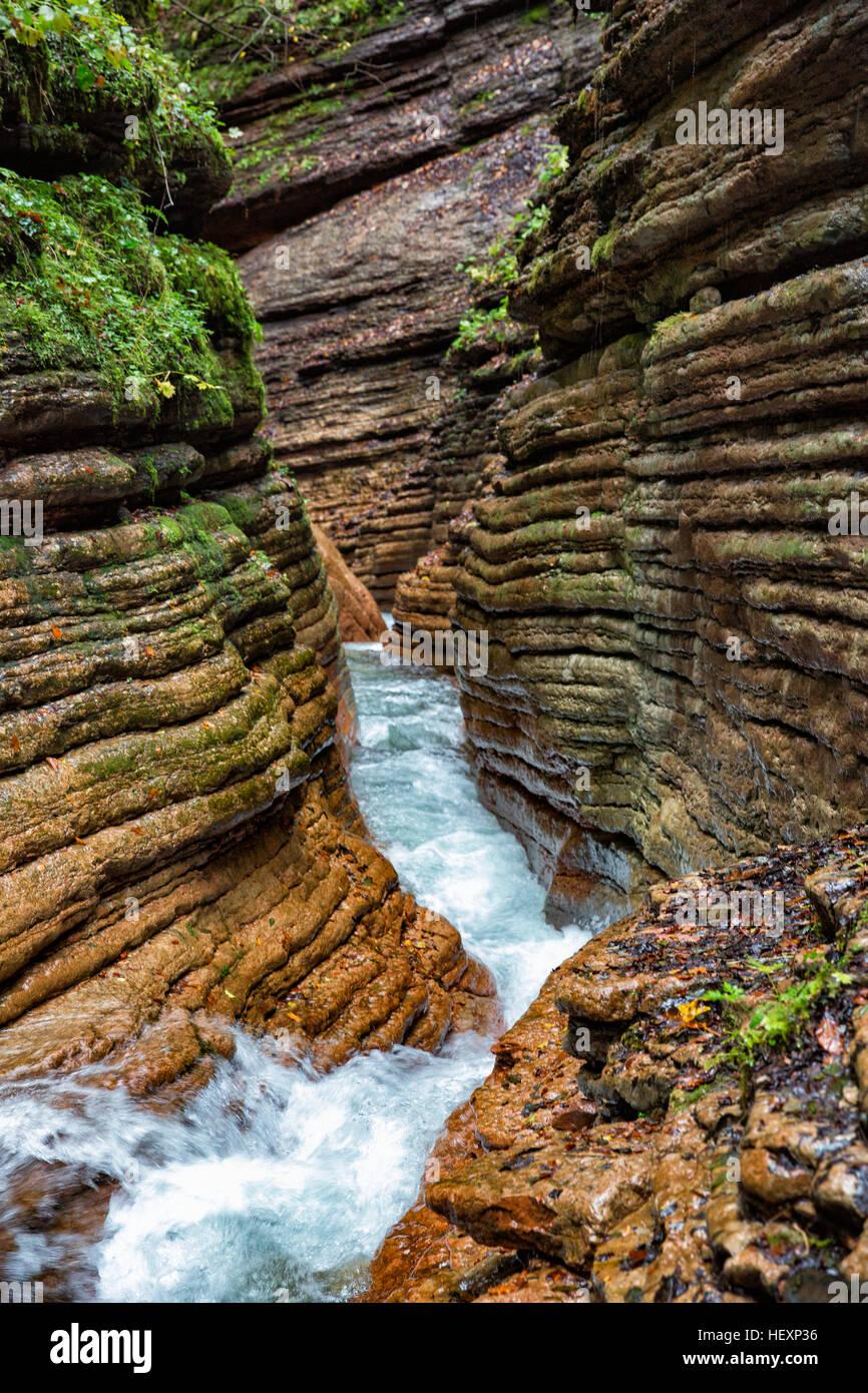 Austria, Tennegau, Taugl river Stock Photo