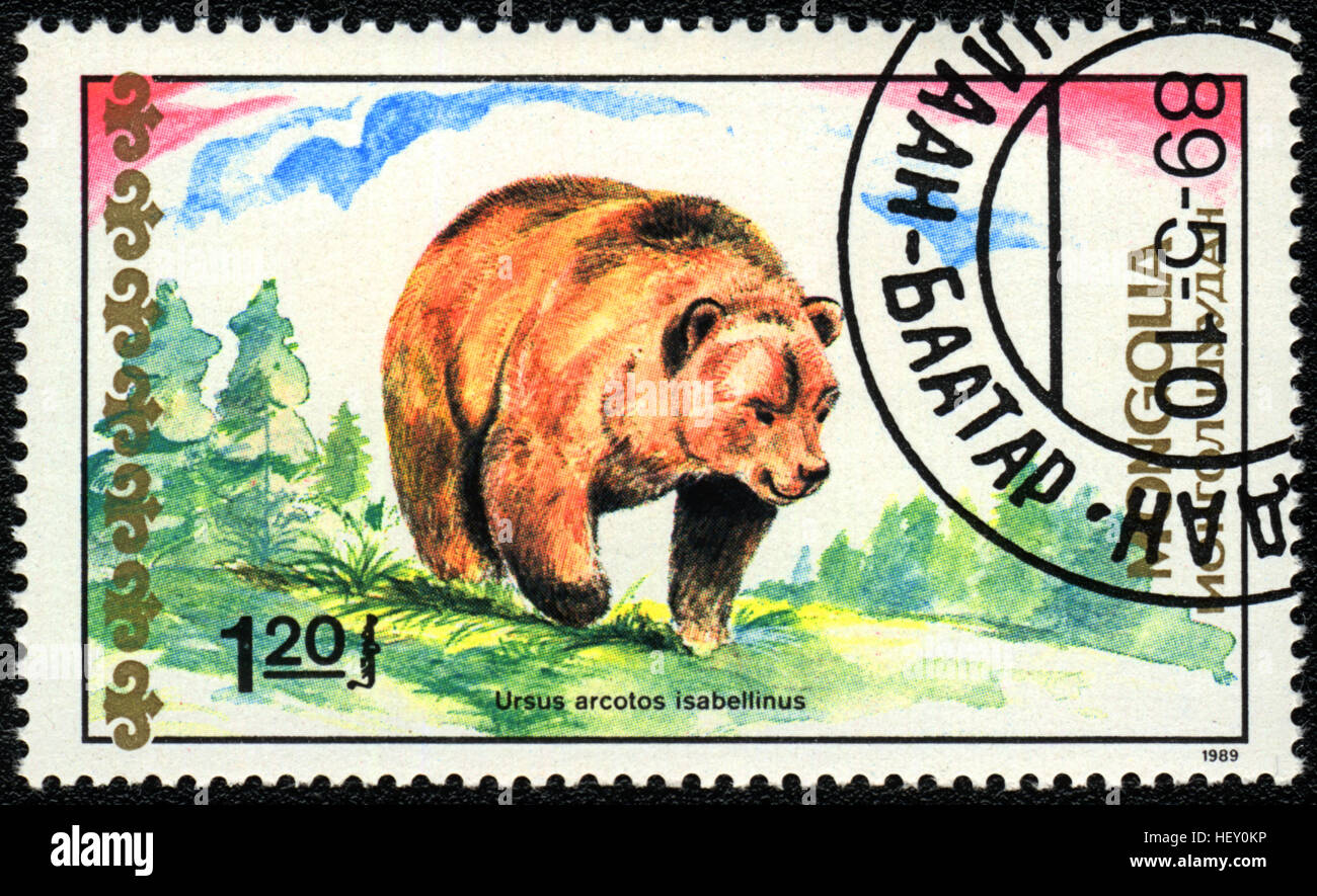 A postage stamp printed in Mongolia shows Himalayan Brown Bear,  'Bears' series, 1989 - Stock Image