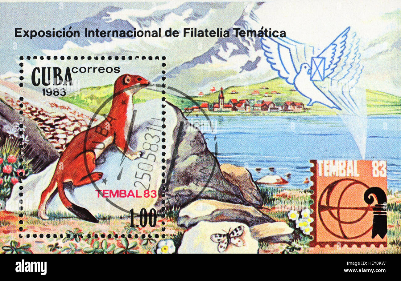 A postage stamp printed in Cuba shows Mustela nivalis (International Philatelic Exhibition Tembal 83), 1983 - Stock Image