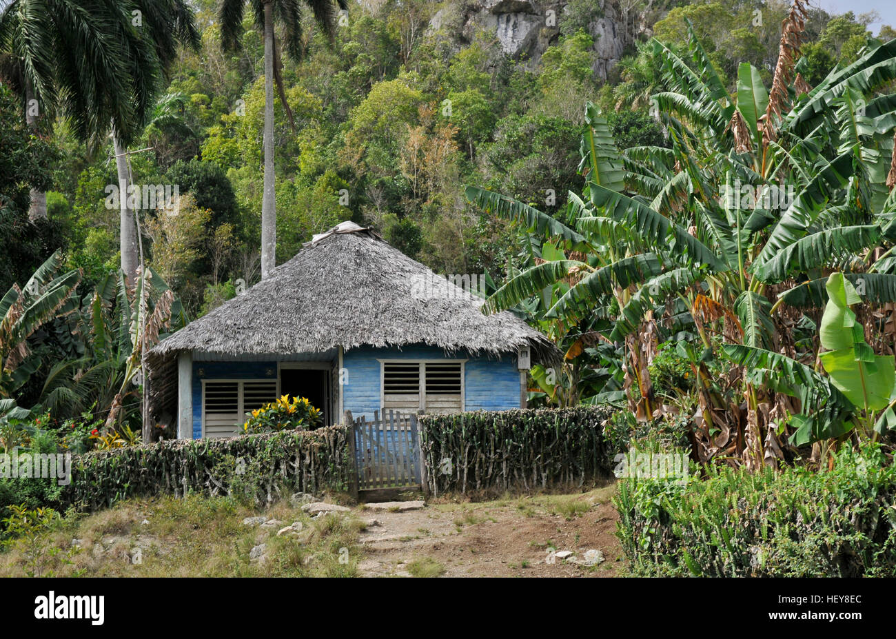 Farm house Holguin province Cuba - Stock Image