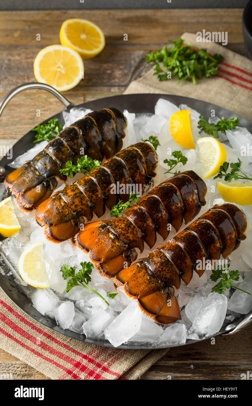 Raw Organic Fresh Lobster Tails with Lemon and Herb - Stock Image