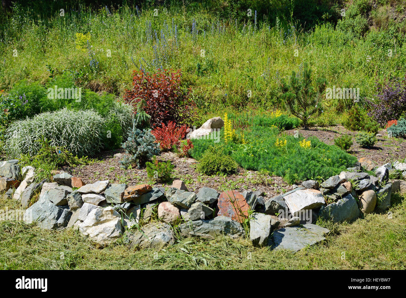 We select plants for the alpine hill