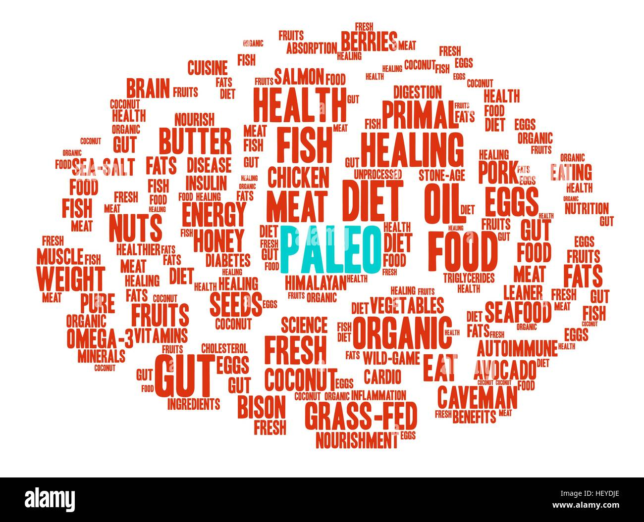 Paleo Brain word cloud on a white background. - Stock Vector