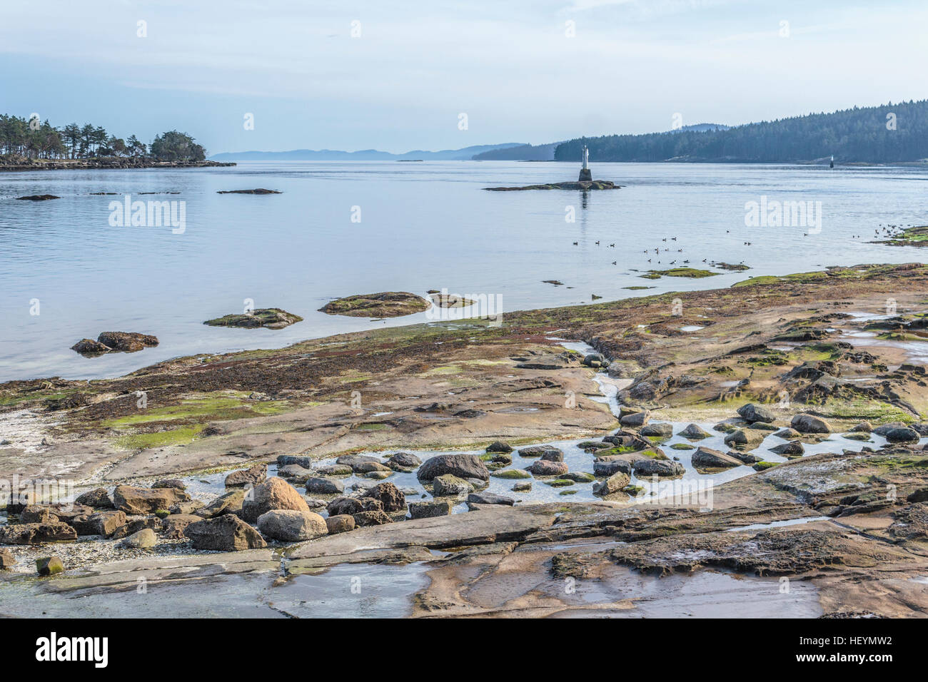 A sunny winter day at a rocky beach on Gabriola Island, in British Columbia's Gulf Islands. - Stock Image