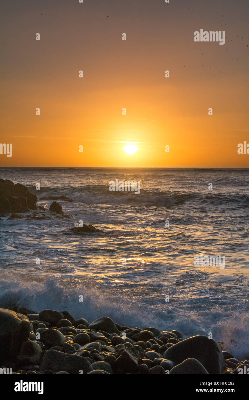 Porth Nanven, near St Just, Cornwall, UK. 26th December 2016. UK Weather. Boxing day Sunset at Porth Nanven, sometimes - Stock Image