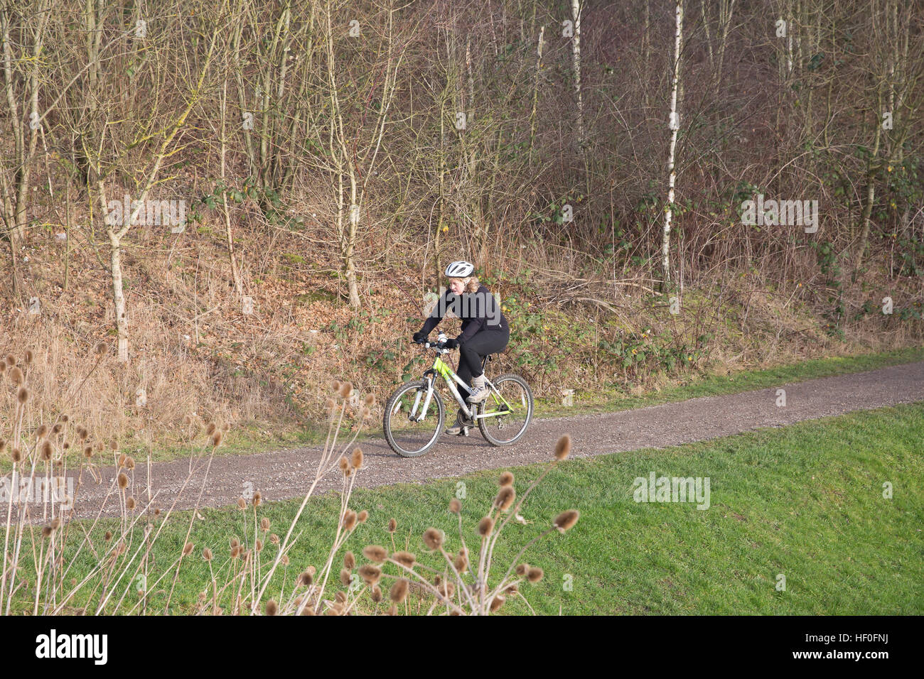 Chesterfield, UK, 27th December 2016, Joggers, cyclists and walkers along Chesterfield canal. Credit: Keith Larby/Alamy - Stock Image