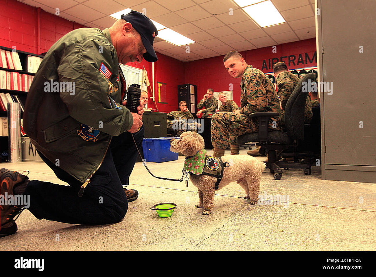 Les Kushner, a Marine Fighter Attack Squadron 115 alumni, takes a moment to water his service dog, Charlie Brown, - Stock Image
