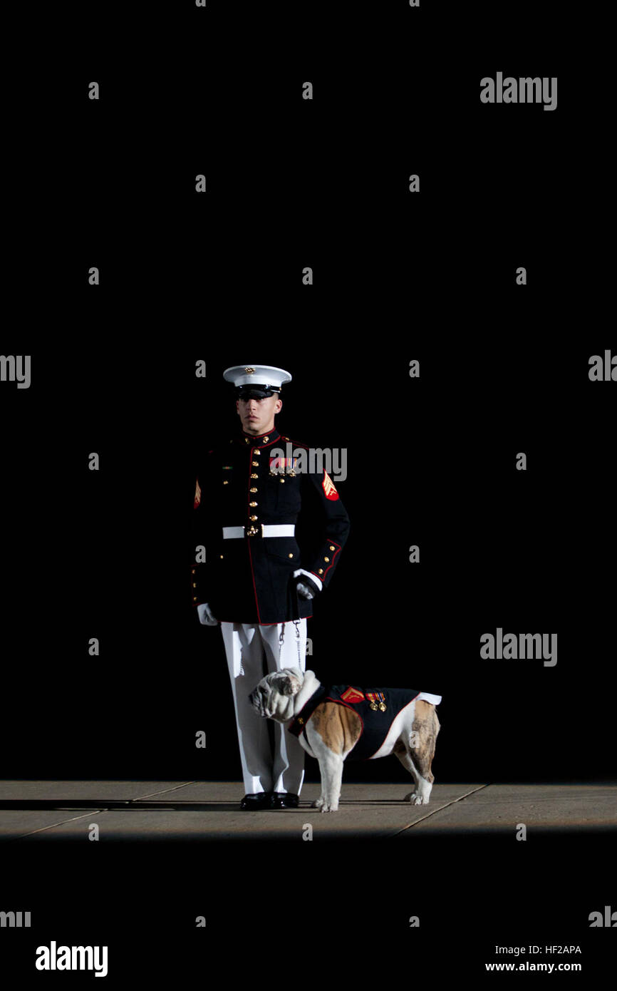 A U.S. Marine Corps sergeant escorts the Marine Corps mascot, English bulldog Lance Cpl. Chesty XIV, at center walk Stock Photo