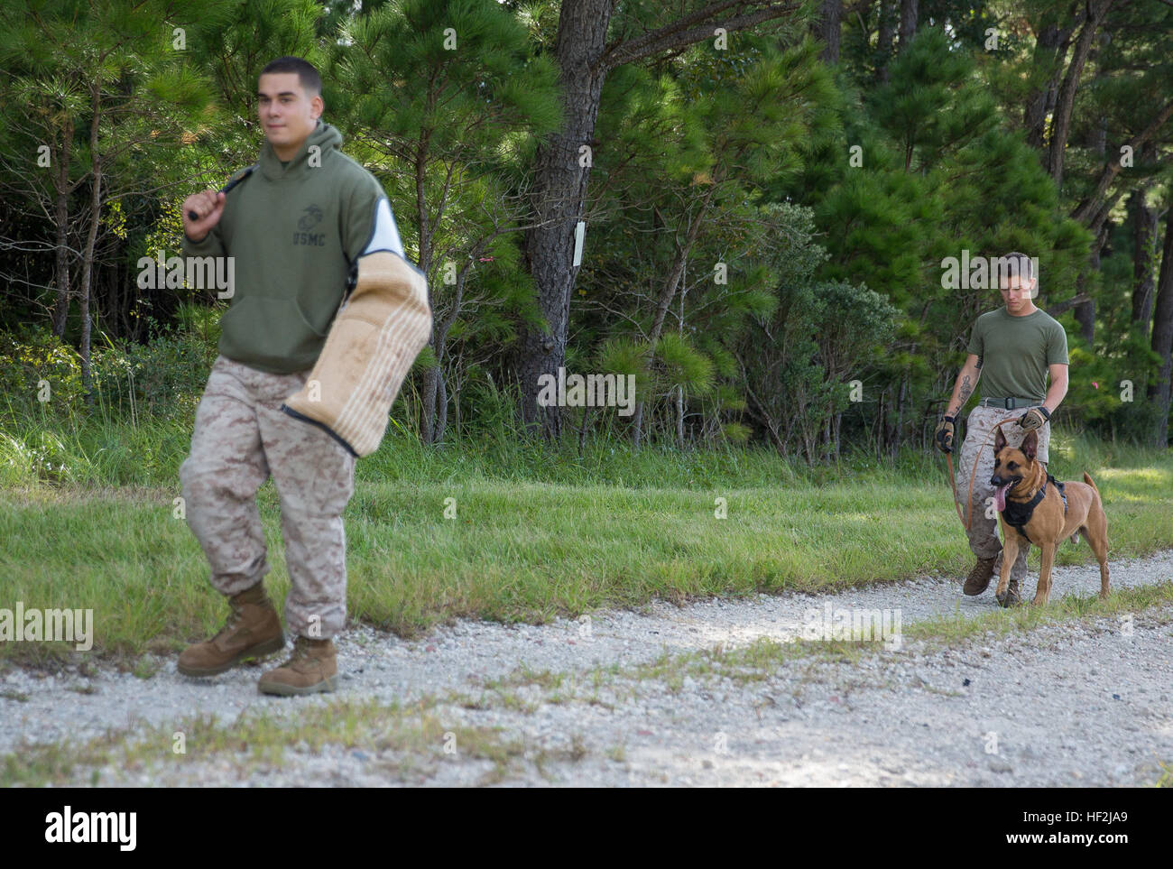 Lance Cpl. Jacob Varela, left, a combat tracker with Military Working Dog Platoon, 2nd Law Enforcement Battalion, - Stock Image