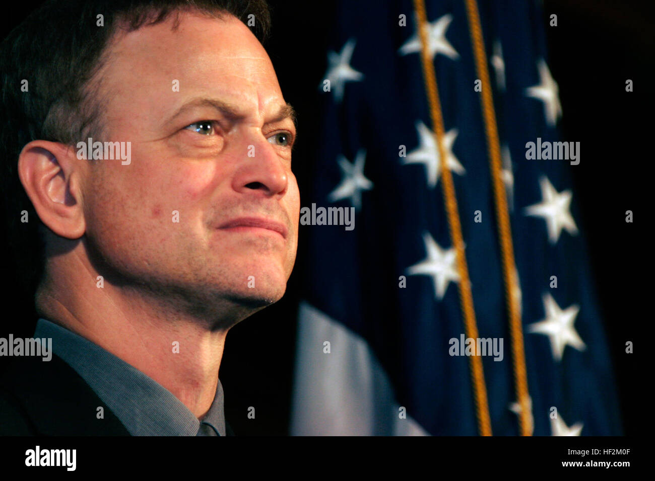 Co-executive producer of 'Brothers at War,' actor Gary Sinise reacts during a question and answer period following - Stock Image