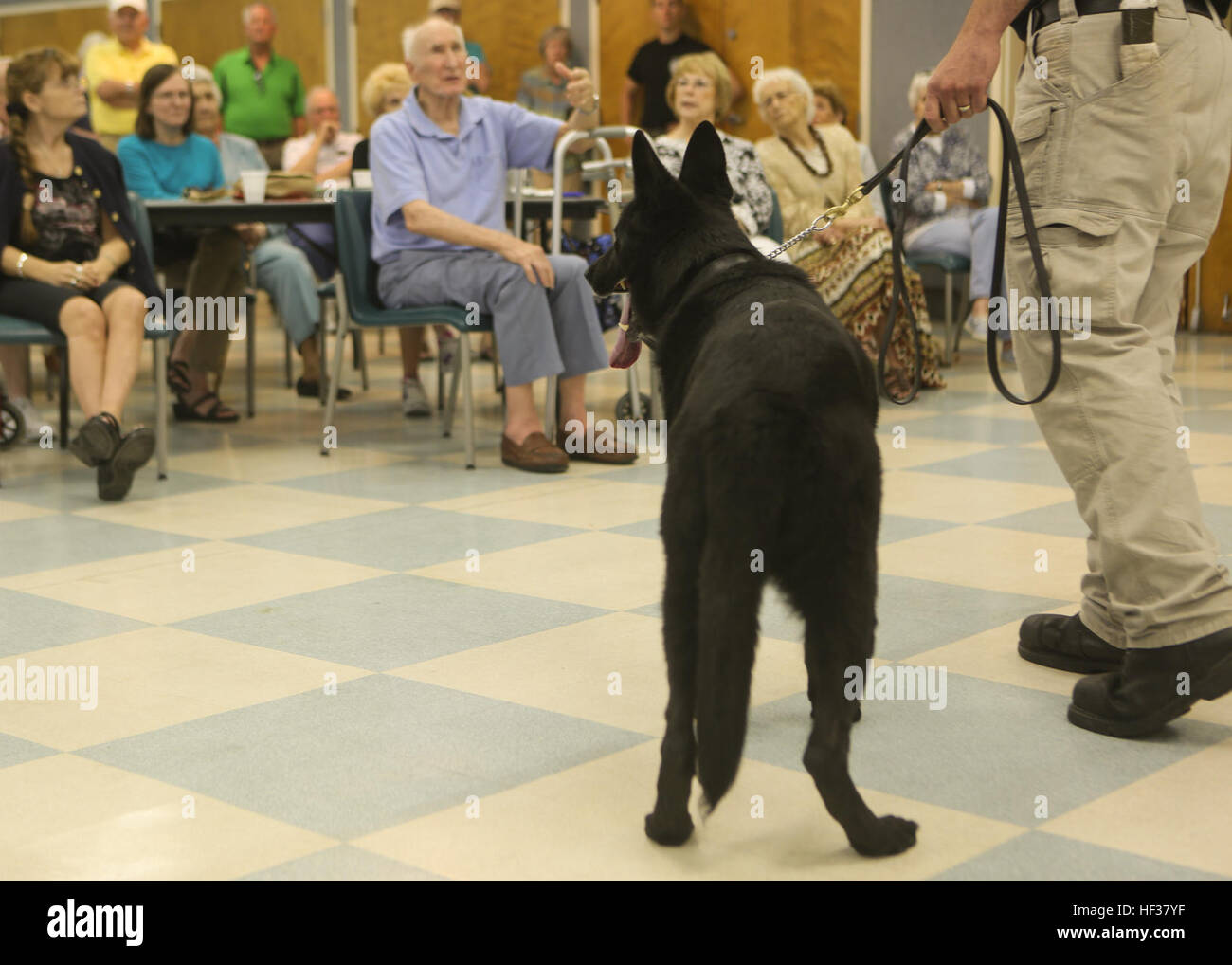 A member of the Provost Marshall's office K-9 unit answers questions from the crowd while his dog obediently waits - Stock Image
