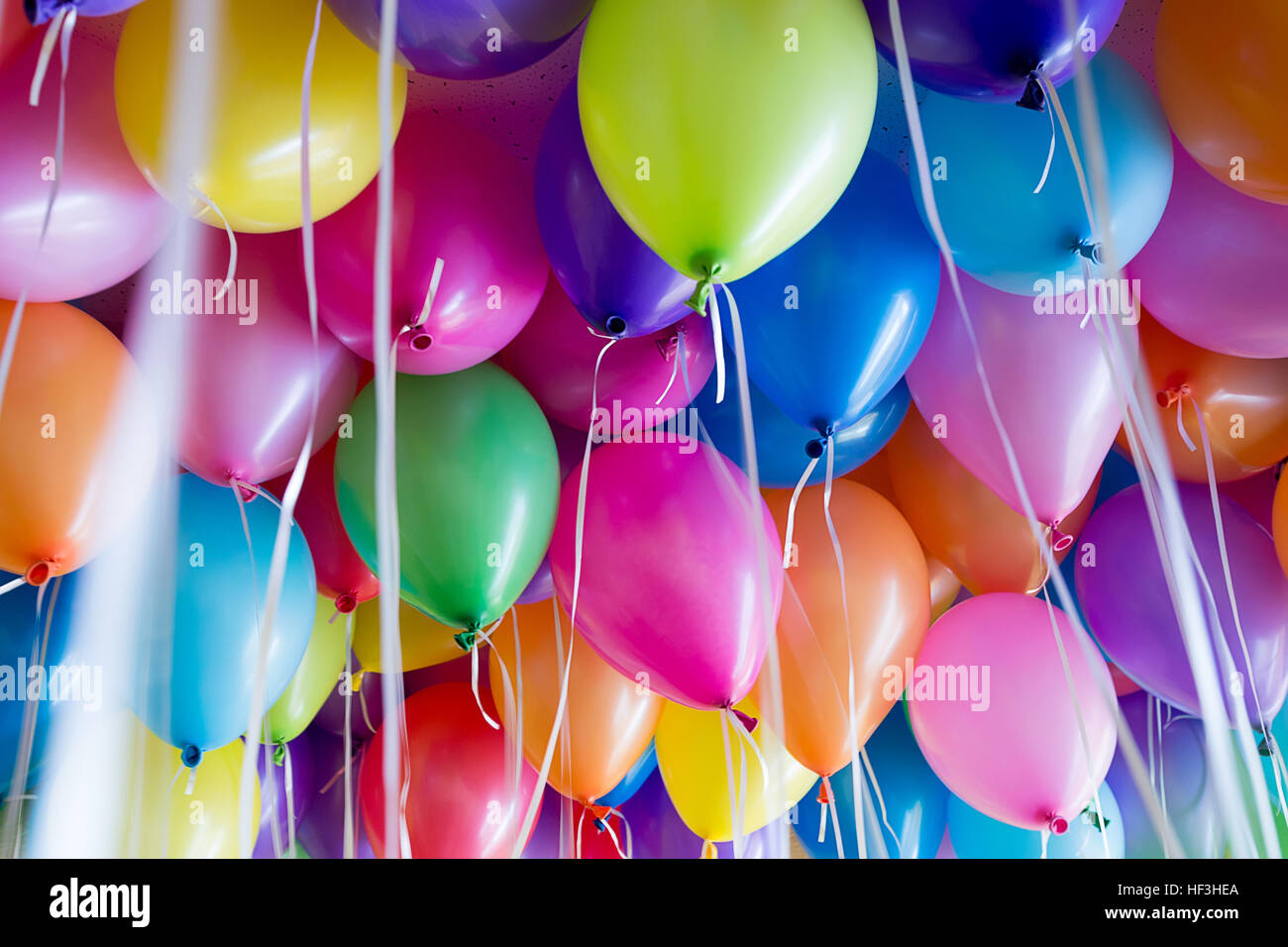 festive, colorful balloons with helium attachment to the white ribbons - Stock Image