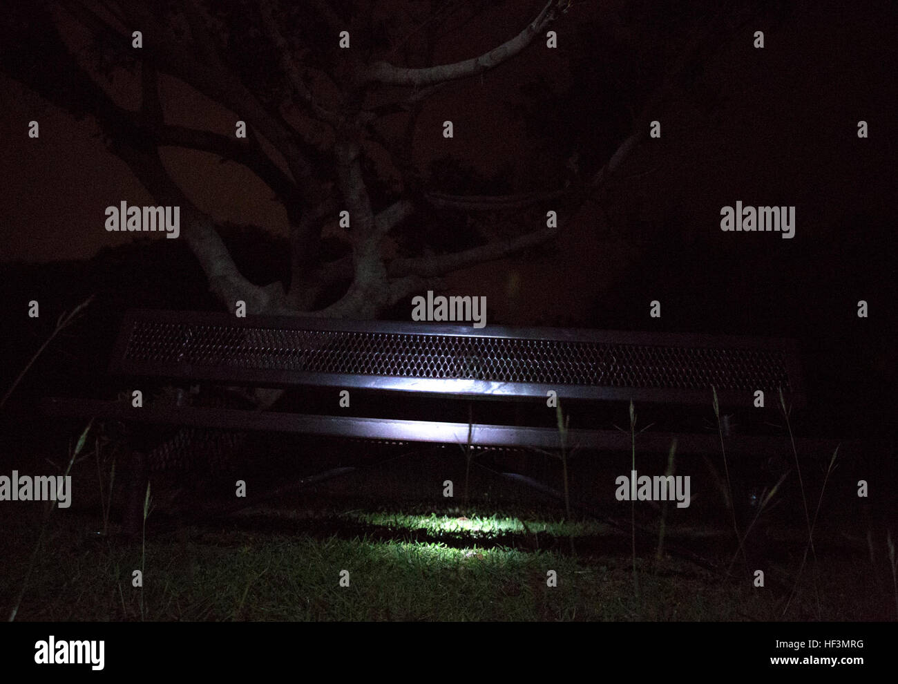 A bench in a small field is illuminated during the Marine Corps Community Services Tours Plus Spooky Sites Tour Stock Photo