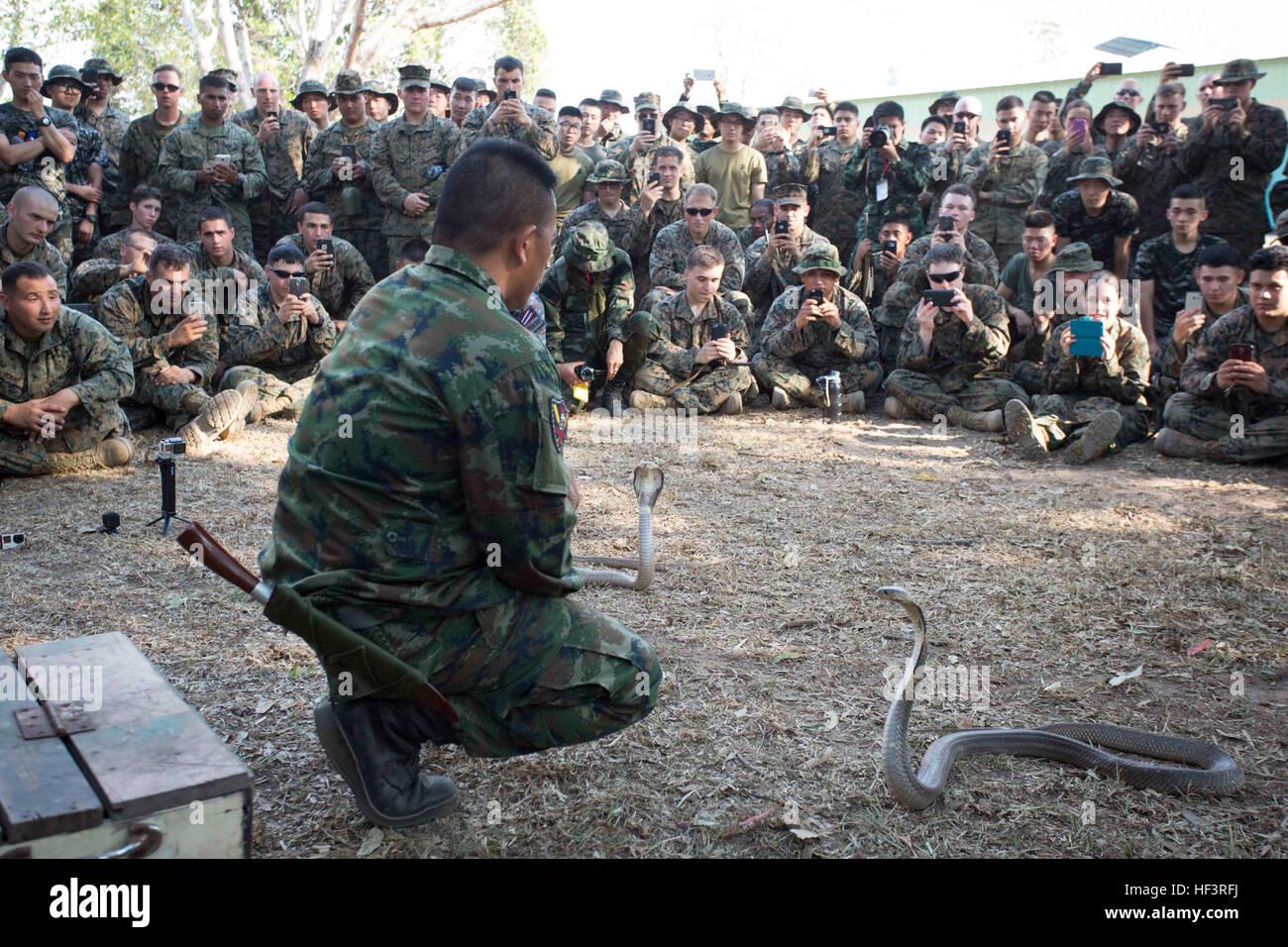 thai marine recon