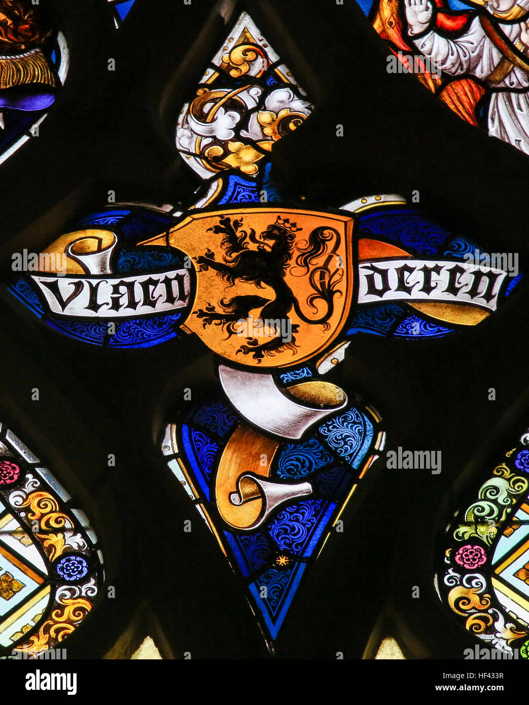 Stained Glass window depicting the Flemish Lion and the text Vlaanderen (Flanders) in the Cathedral of Saint Bavo - Stock Image