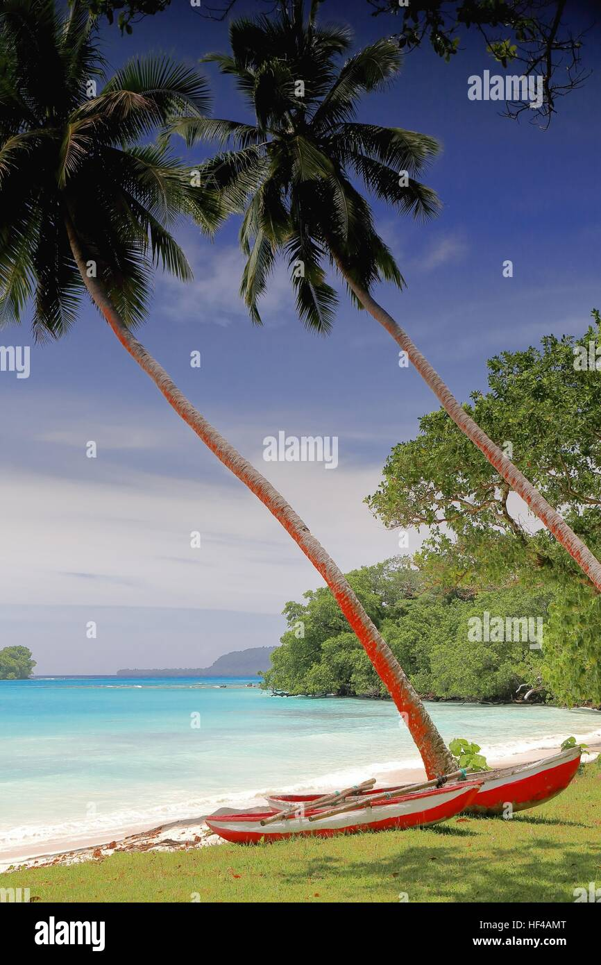 Two fishing boats tied together as catamaran placed under coconut palm trees on the white sand of the beach facing - Stock Image