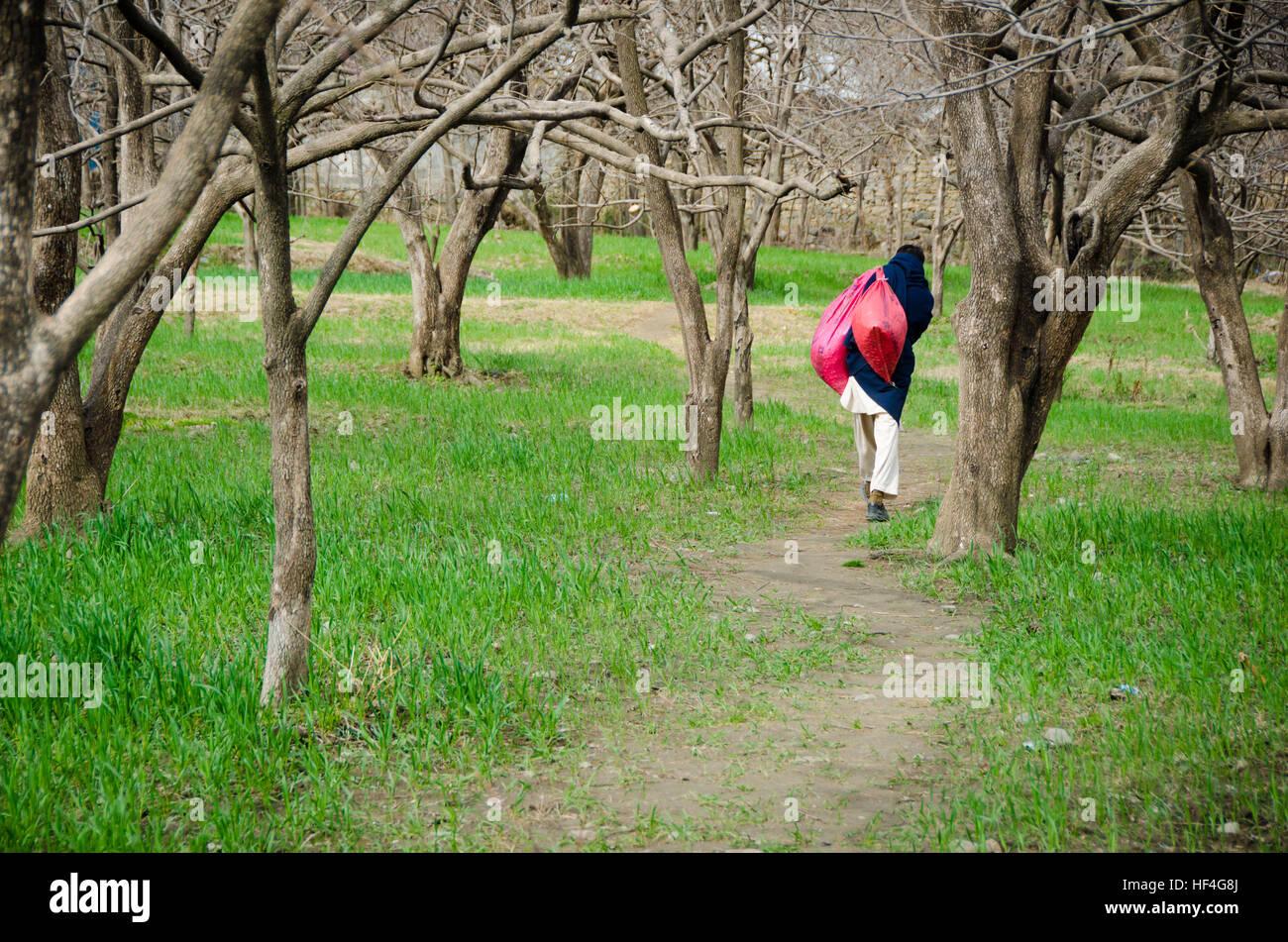 Pashtun Women Stock Photos & Pashtun Women Stock Images ...