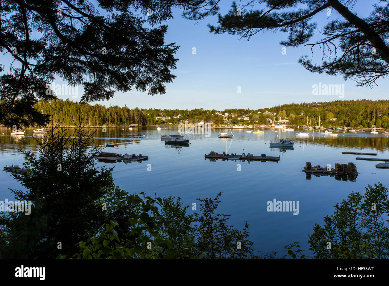 Boats moored in Northeast Harbor, Maine, USA - Stock Image
