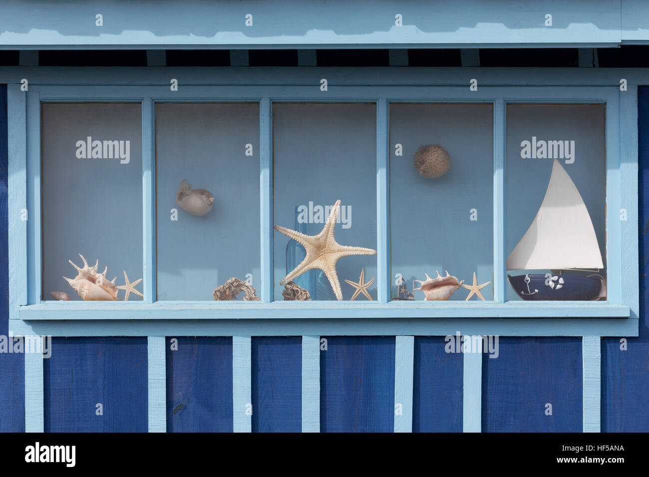 Window with starfish and maritime decorations on a fisherman's hut, Le Site ostréicole et naturel de Fort - Stock Image